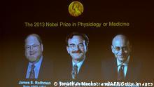 Nobelpreis für Medizin 2013