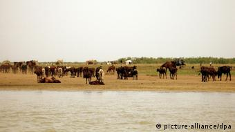 Leben am Tschadsee in Afrika