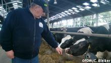 Milchkühe auf dem Böschen Bauernhof in Grasberg