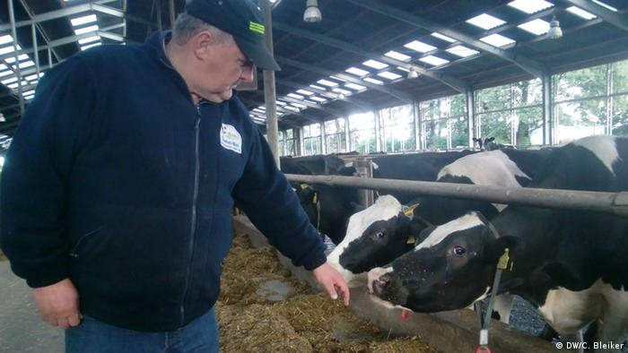 (Farmer Dirk Böschen petting one of his cows (Photo: DW/Carla Bleiker)