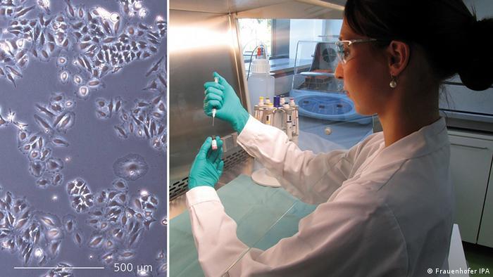 Deutschland Messe Biotechnica Nanozwerge als Tumorkiller