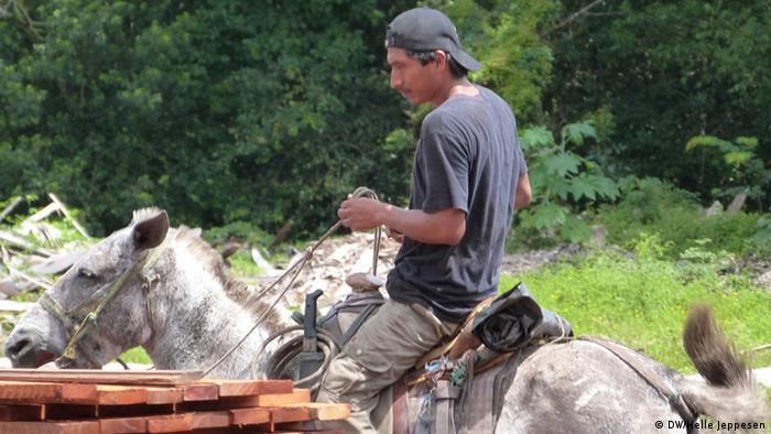 Die Einwohner im Dorf Carmelita leben von den Produkten, die sie im Wald finden. (Foto: Helle Jeppesen für DW)