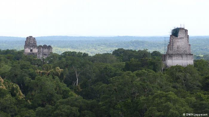 floresta da Reserva da Biosfera Maia, no norte da Guatemala
