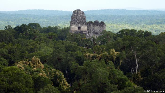 Rainforest panorama in El Peten, with ancient temples in view