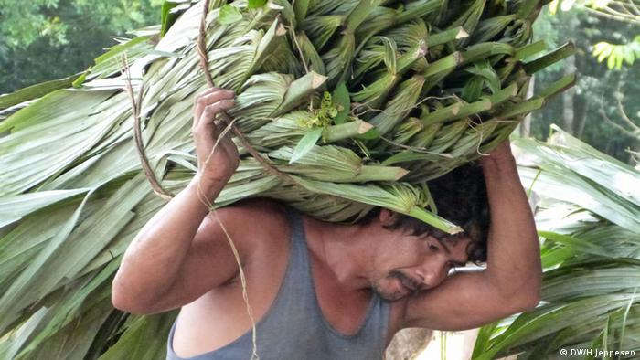A man carries guano palm leaves on his head in Carmelito, Guatemala. (Photo: Helle Jeppesen)