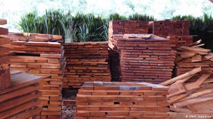La madera aserrada es uno de los principales productos de los bosques de México.