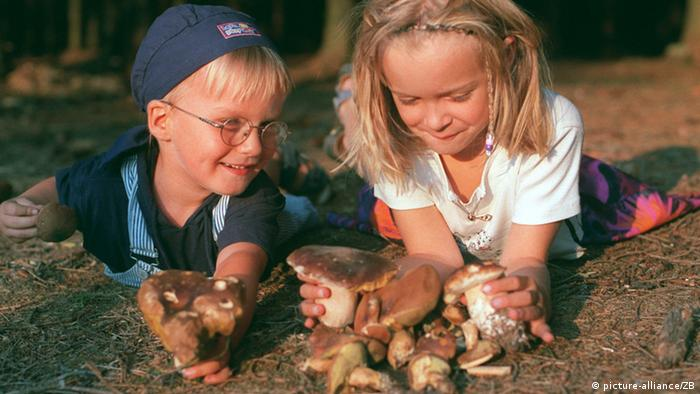 Two children sort through a pile of mushrooms
