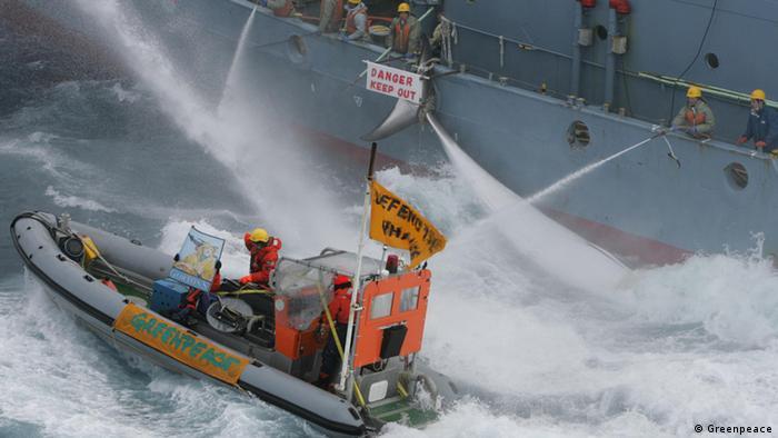 قایقهای تندرو سازمان مدافع محیط زیست Greenpeace موی دماغ کشتیهای بزرگ صید نهنگ در اقیانوسها میشوند. این روش اعتراضی بالاخره باعث شد تا جامعه جهانی از سال ۱۹۸۶ صید تجاری نهنگها را که با خطر انقراض روبرو هستند، ممنوع اعلام کند.