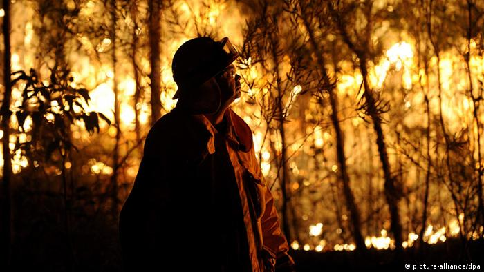 A fire fighter looks up at a bushfire in Australia