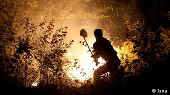 طبق آمارهای موجود، پوشش جنگلی ایران یکسوم استاندارد دنیاست، اما با این حال سالانه ۵ / ۱ تا ۵ / ۳ درصد از جنگلهای کشور تخریب میشود