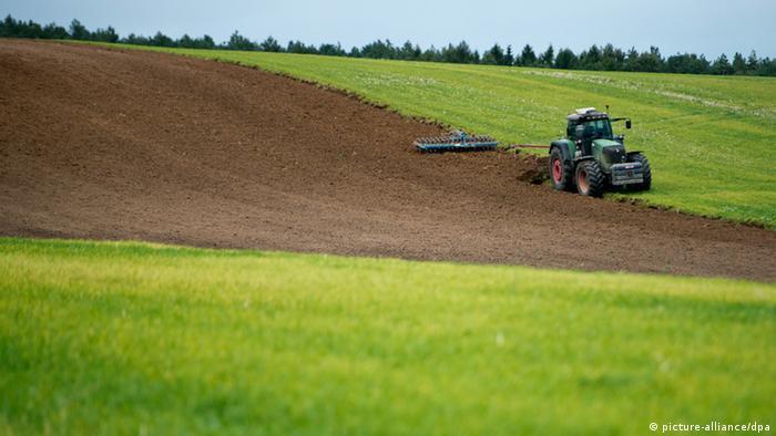 Resultado de imagem para FAO e OCDE lançam projeto de agricultura sustentável