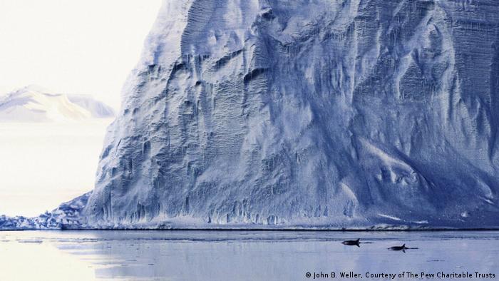Eisberg in der Antarktis (Foto: John B. Weller / Courtesy of the Pew Charitable Trusts)