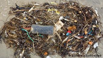 أكياس البلاستيك: القتلة الحقيقيون للحياة البحرية 0,,17202619_404,00