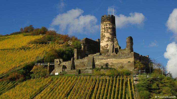 The ruins of Fürstenberg Castle on a hill above the River Rhine (Fotolia/LianeM)