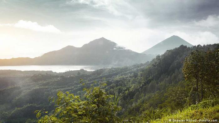 Berge auf der Insel Bali (Foto: Dudarev Mikhail, Fotoalia)