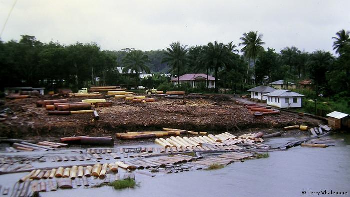 Nigerdelta in Nigeria (Terry Whalebone)
