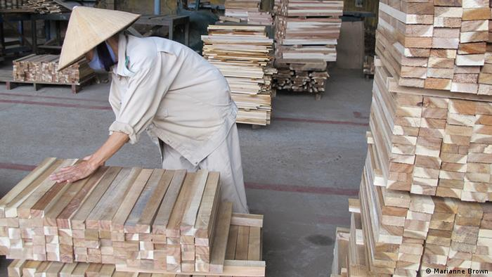PHOTO INFO Title: Vietnam Factory 1 Keywords: Vietnam Timber Who is the photographer: Marianne Brown When was the picture taken: September 24 Where was the picture taken: Quang Nam province, Vietnam Description: What are we seeing in this picture? Who are we seeing? A worker in a conical hat sorts pieces of timber at a wood processing factory in central Vietnam.