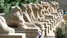 Die Widdersphinx-Allee vor dem ersten Pylon und dem Eingang zum Tempel des Amun in der Tempelanlage von Karnak bei Luxor am 22.11.2004. Der Widder ist das heilige Tier des Amun. Foto: Bernd Weißbrod dpa +++(c) dpa - Report+++ pixel