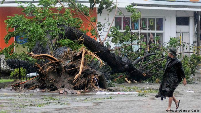 A man walks past a tree uprooted by strong winds brought by super Typhoon Haiyan that hit Cebu city, central Philippines November 8, 2013. (Photo: AFP)