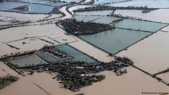 Überschwemmte Reisfelder (Foto: REUTERS/Leo Solinap)