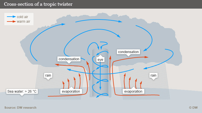Cross-section of a tropic twister