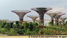 Garden by the Bay Singapur