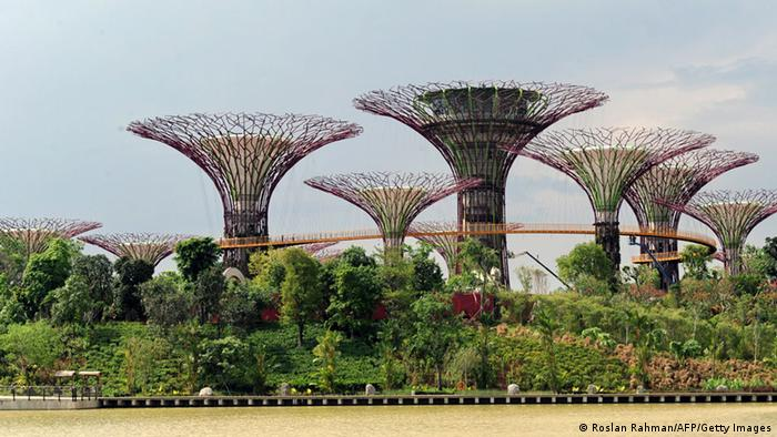 Garden by the Bay Singapore (Roslan Rahman/AFP/Getty Images)