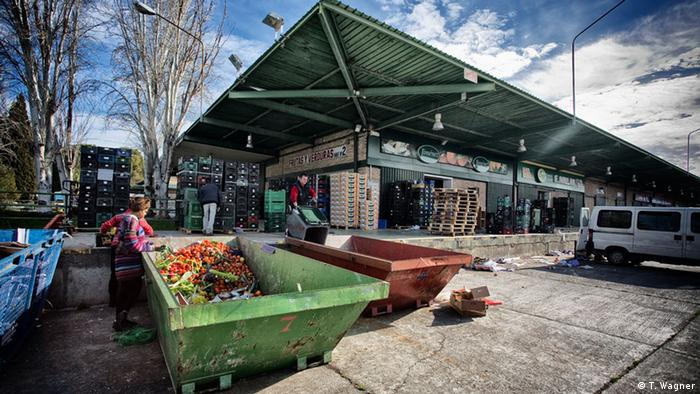 A woman sifts through colorful fruits and vegetables in a green dumpster behind a building. Photo: Thomas Wagner