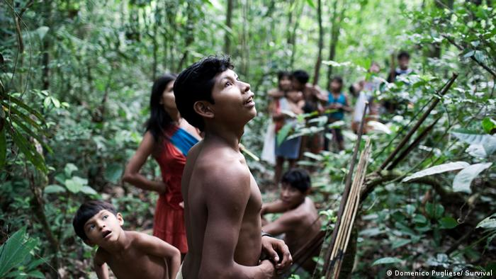 Os Awá são nômades e vivem apenas da caça, pesca e coleta de frutas