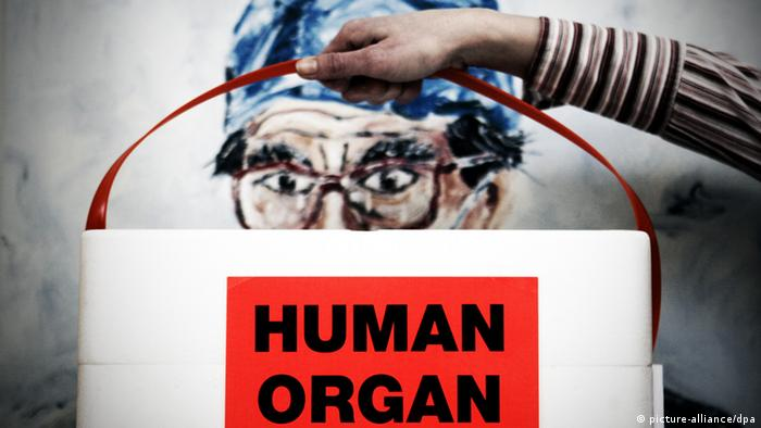 A container holding a human organ is held by the handle. (Photo: Frank May/dpa)
