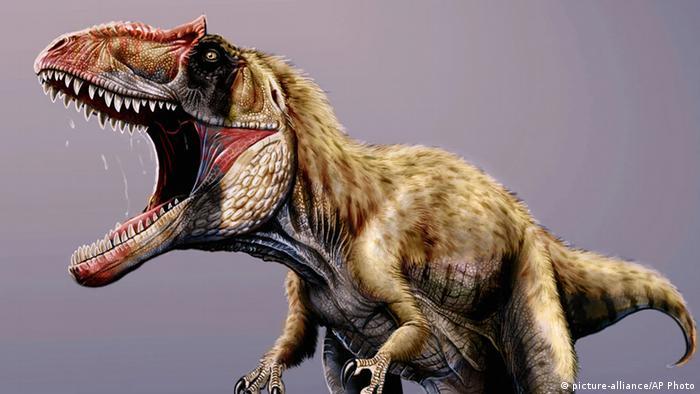 Los Dinosaurios Padecieron Cancer Revelan Cientificos Ciencia Y Ecologia Dw 06 08 2020 Con estos dibujos de dinosaurios podrás imprimir y pintar grandes animales que ya se han extinguido como el branquiosaurio, el velociraptor, el tiranosaurio o el diplodocus. los dinosaurios padecieron cancer