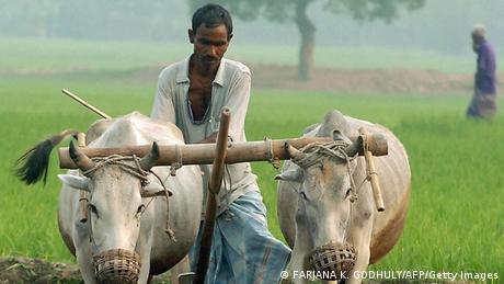 Bangladesch Vergiftetes Wasser