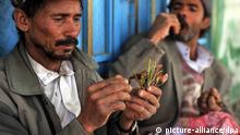 Jemen Sanaa Kathstrauch