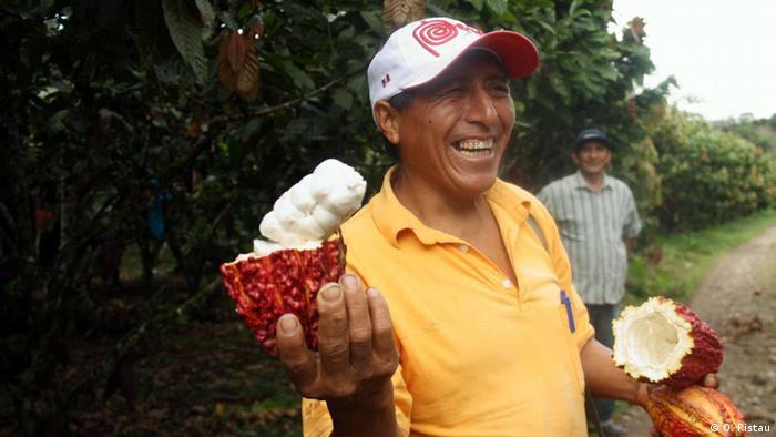 Uzgajivač kakaovca u Peruu