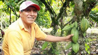 Francisco Rodriguez conta que o cacau da mais trabalho, mas a legalidade compensa
