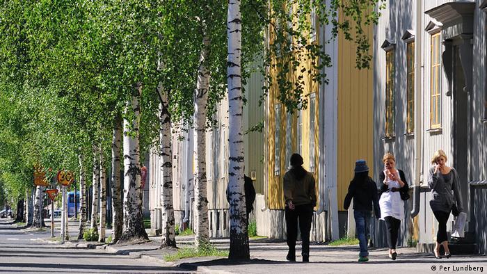 Schweden Umea Kulturhauptstadt 2014 Umeå Birken
