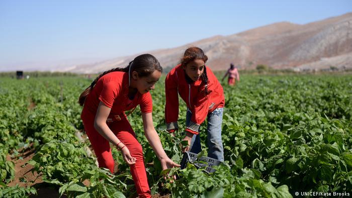 Zwei syrische Flüchtlingskinder arbeiten auf einem Feld im Libanon (Foto: UNICEF/Kate Brooks)