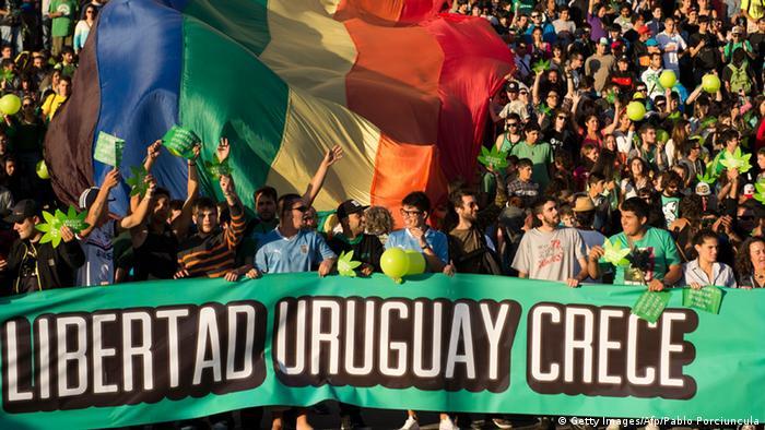 Uruguay erlaubt Marihuana-Handel (Foto: PABLO PORCIUNCULA/AFP/Getty Images)