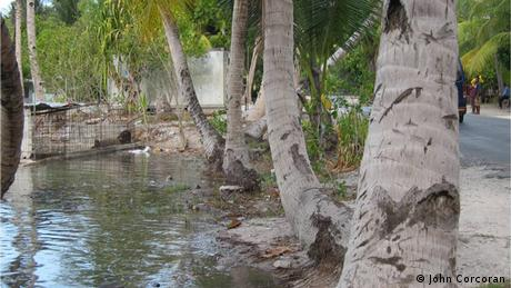 Sea reaching the main road in Kiribati (photo: John Corcoran)