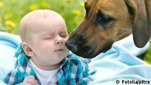 Baby mit Hund