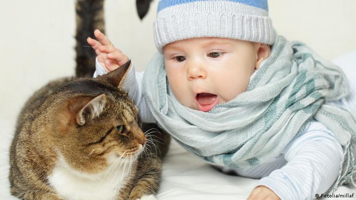 Baby mit Katze
