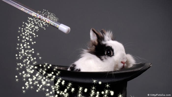 A rabbit in a magician's hat (Kitty/Fotolia.com)