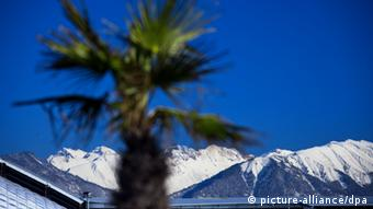 Palm trees and mountain peak - Sochi, the scene of the 2014 Winter Olympics