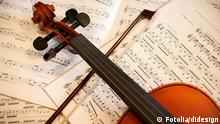 Violin with bow, Copyright: didesign