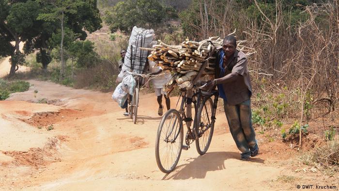 Landwirtschaft und Brandrodung in Sambia (Foto: T. Kruchem/DW)