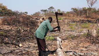Sambia Landwirtschaft Vizepräsident Guy Scott