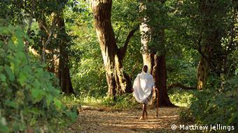 A man walks in the Zhara Church Forest in Ethiopia (Photo: http://www.pbase.com/mij99 / Matthew Jellings)