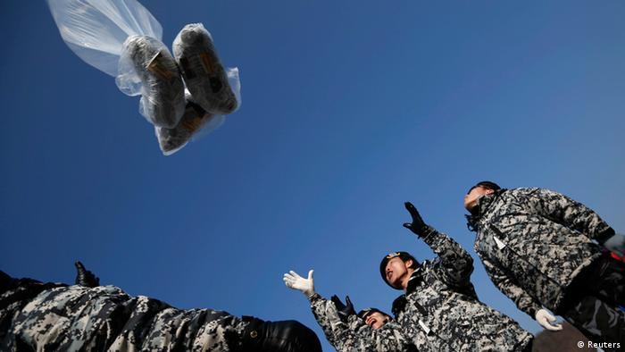 Protest gegen Nordkorea mit Ballons 15.01.2014 (Reuters)