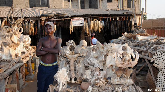 Bildergalerie Voodoo in Westafrika - ,Fetischmarkt in Lome (Togo) (Foto: Katrin Gänsler)