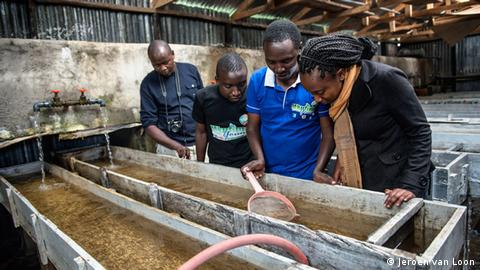 Young farmers inspect an aquaponics system in Nairobi